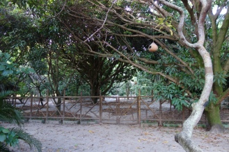 Part of the Sitio where I stayed