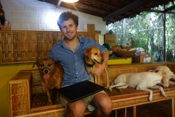 Some of the dogs at the Sitio