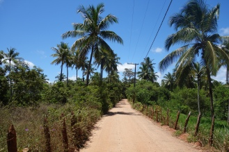 Dirt road in Coqueiro