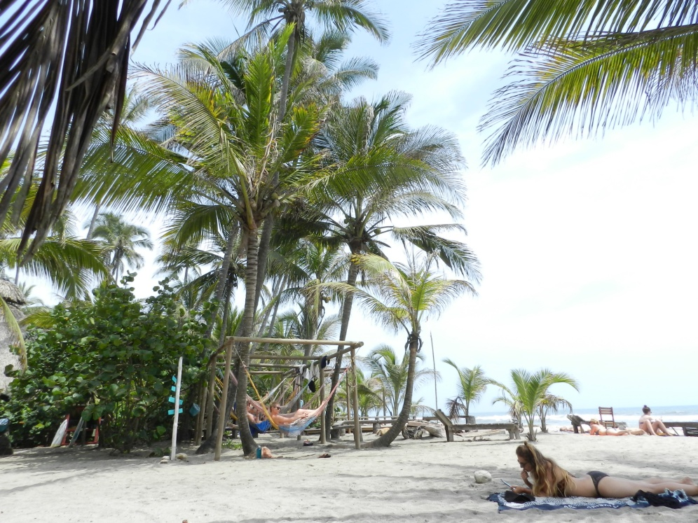 Costeño Surf Camp